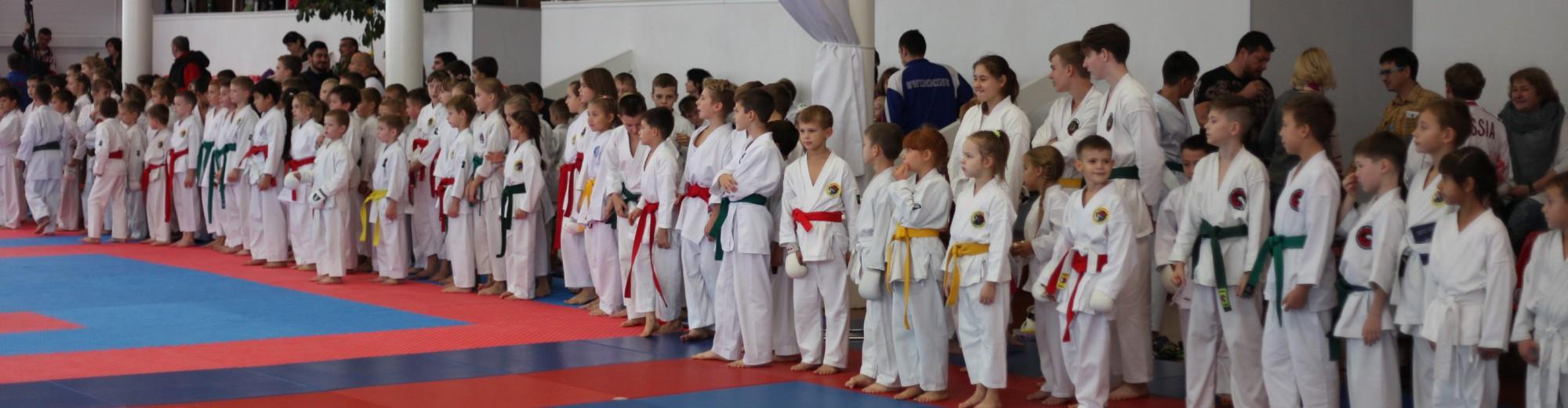 Поволжская Академия Боевых Искусств